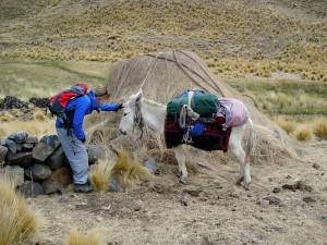Abbie and Friend in the Cordillera Blanca